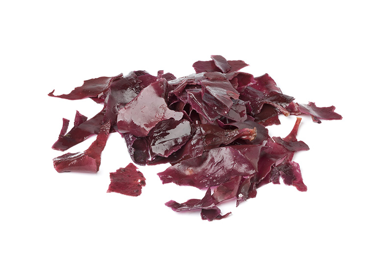 bigstock-Salted-Dulse-Seaweed-on-white--32511386_small