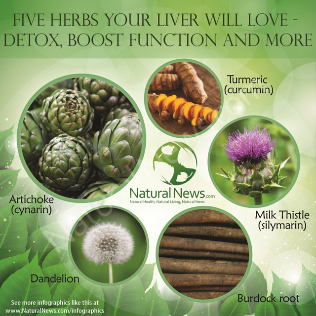 5-Herbs-Your-Liver-Will-Love